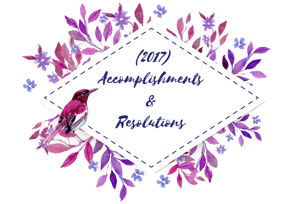 2017 accomplishments and resolutions